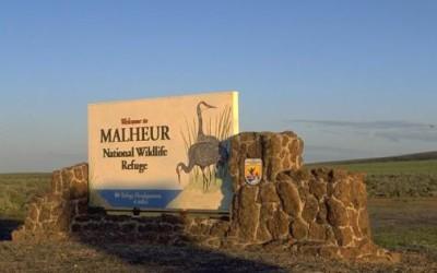 Can we make sense of the Malheur mess?
